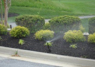 Landscape Irrigation Services in Pasadena, MD